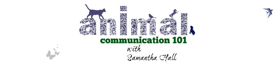Samantha-Hall.com